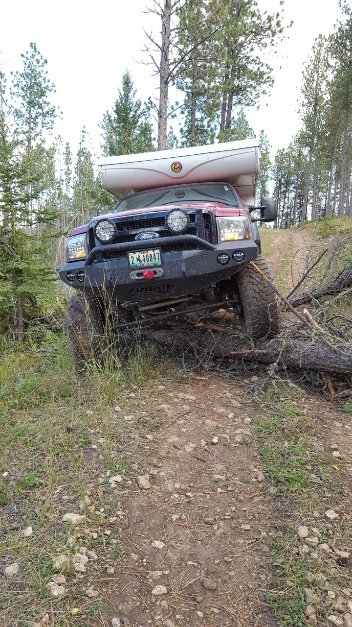 20160916_9_Trail 8155 up and over trees.jpg
