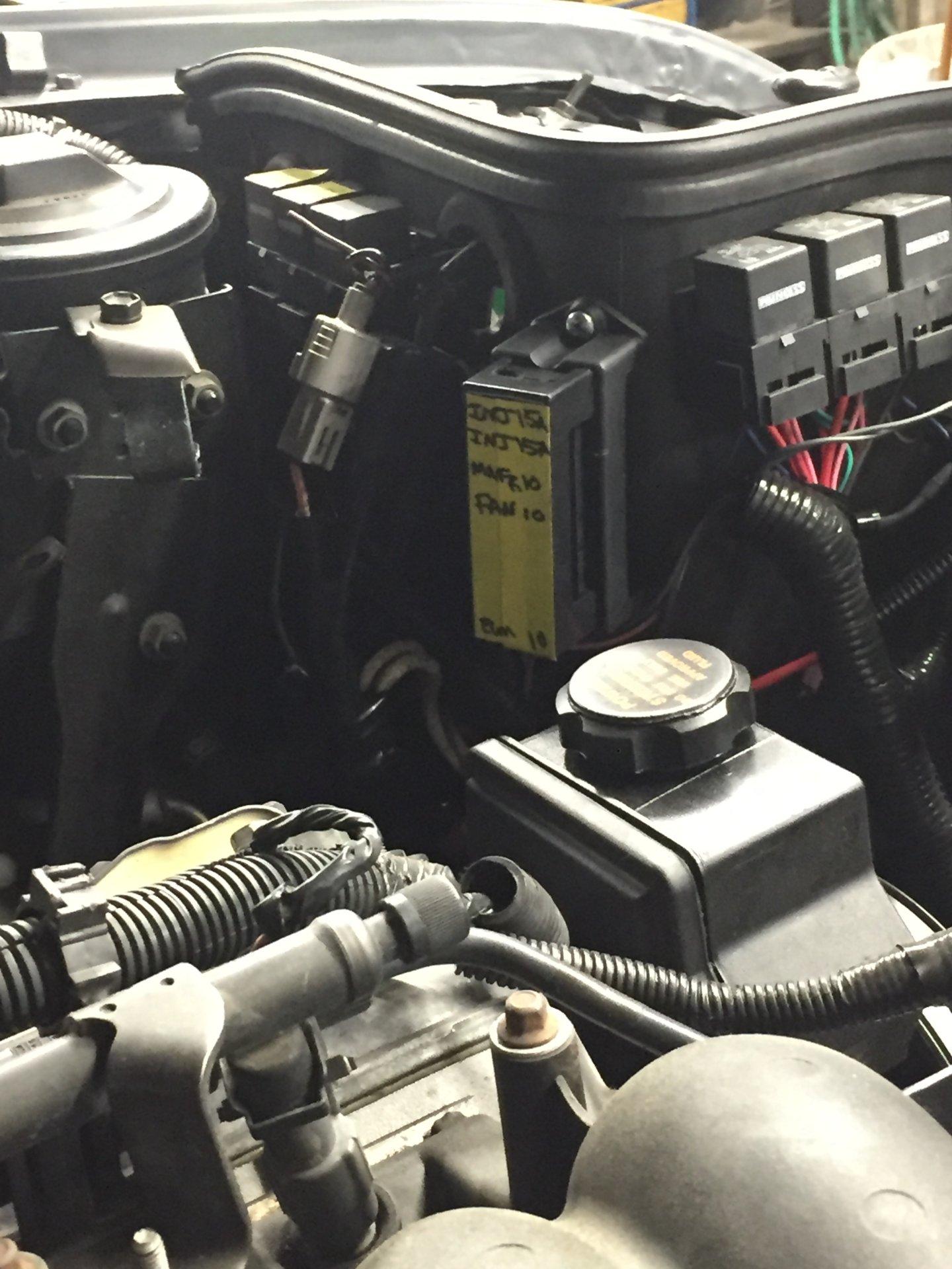 31ECC97D-B984-4859-AAD5-2A7A9E61D99D.jpeg