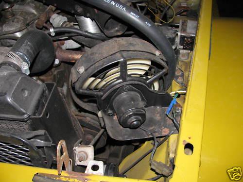 76 Carb Fan Mustard.jpg