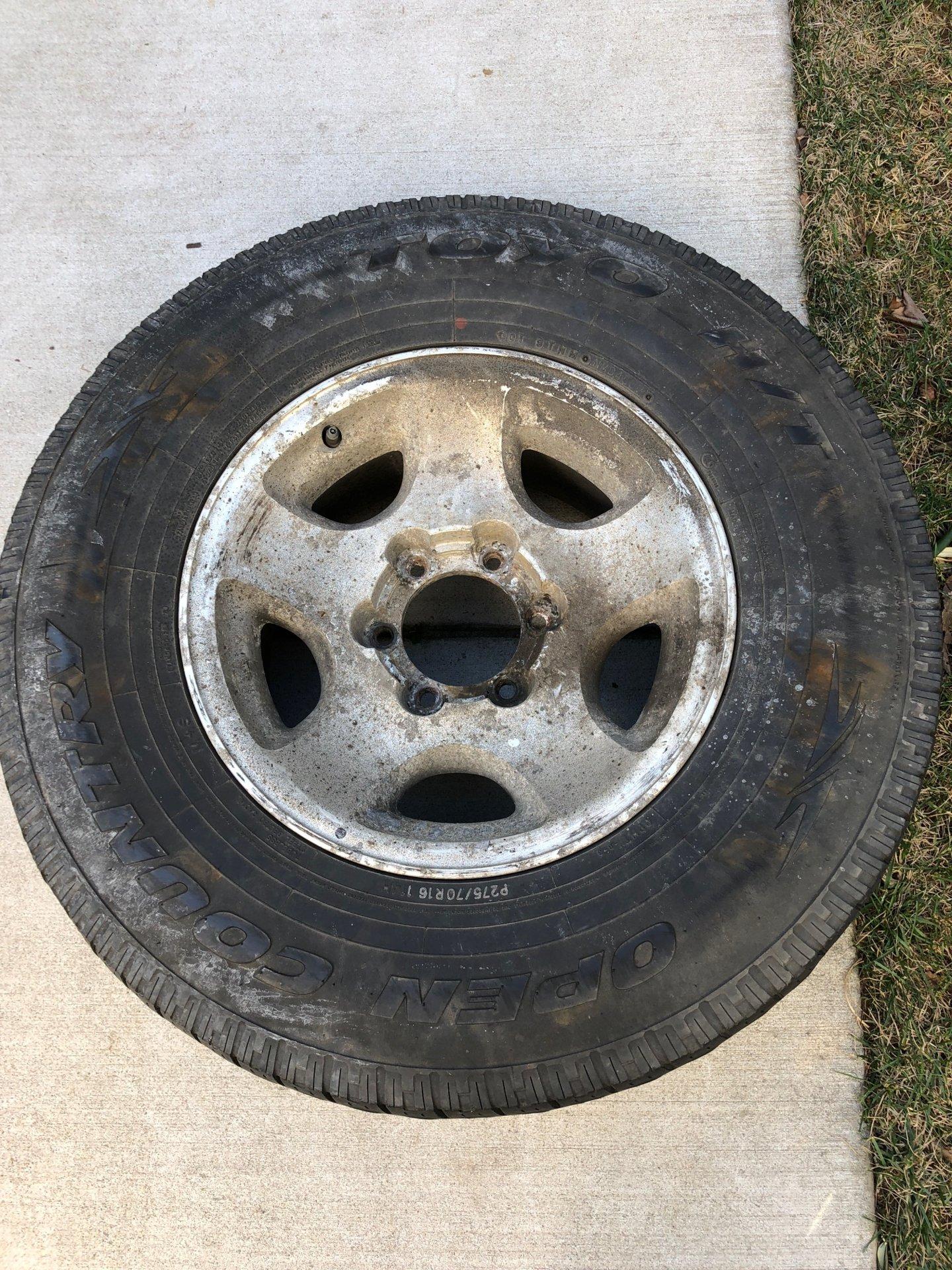 Acorn Wheel.JPG