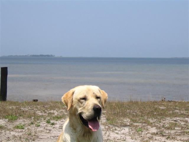 beach 012 (Small).jpg