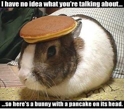 bunnypancake.jpg