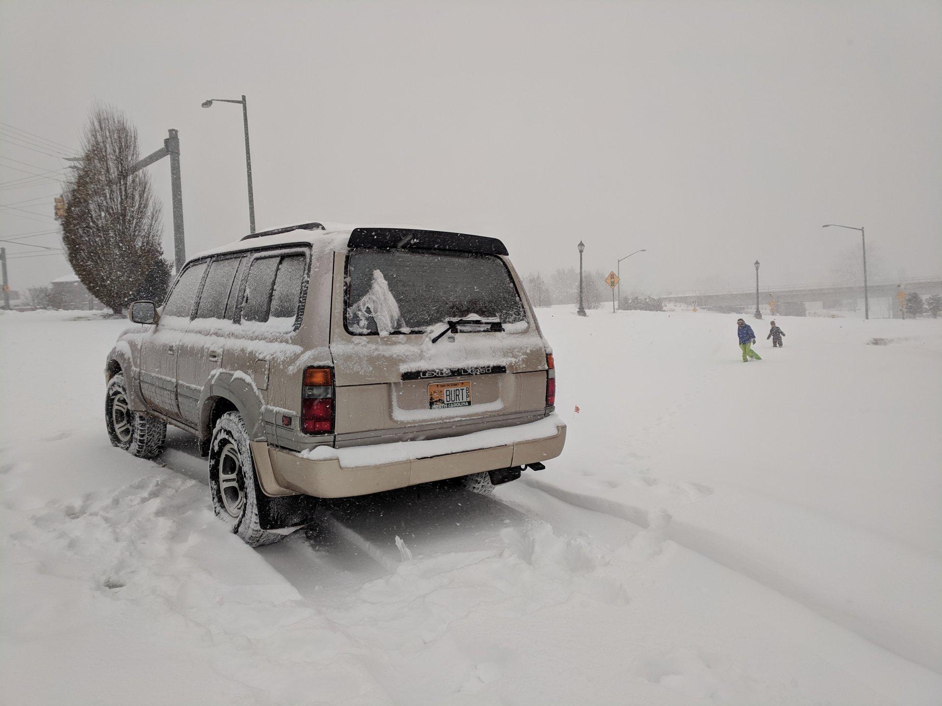 burt in snow.jpg