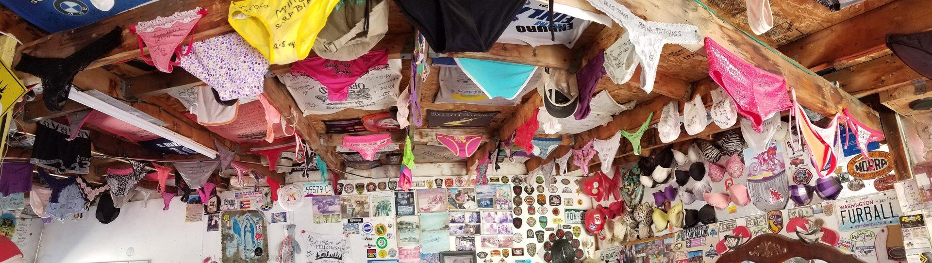 cocos ceiling.jpg