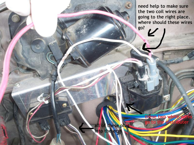 Tbi Wiring Help W  Pictures