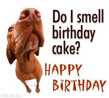do_i_smell_birthday_cake.jpg