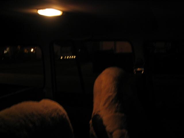 domelight0001.JPG