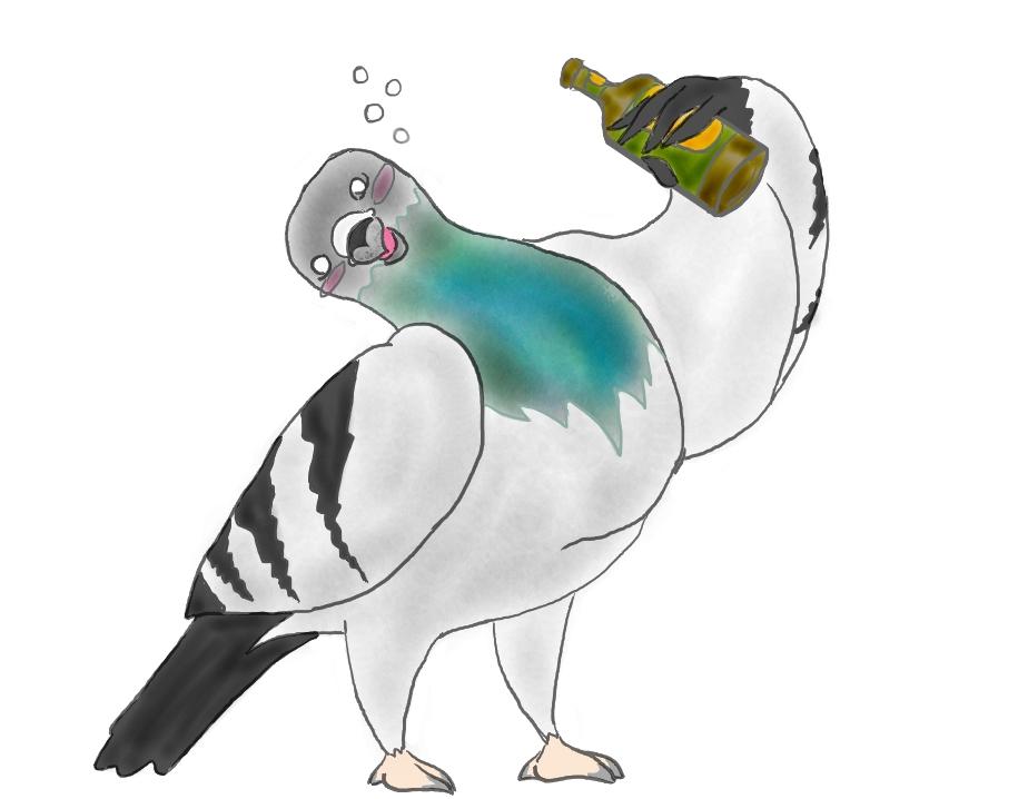 drunk_pigeon_is_drunk_by_1pandamanypanda-d7xaof7.jpg