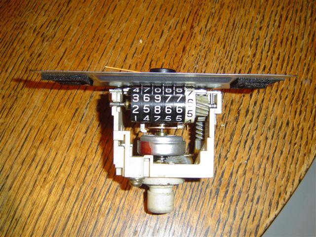 DSC03562 (Small).JPG