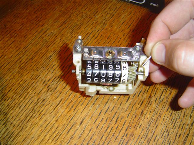 DSC03567 (Small).JPG