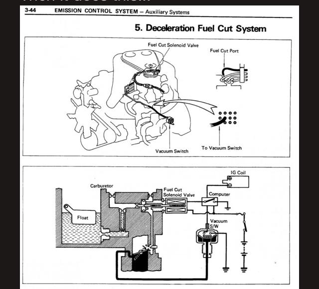 FC3BEF74-2FCA-4BC6-8A42-6F92D54B28F2.jpeg
