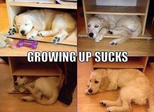 growin up.jpg
