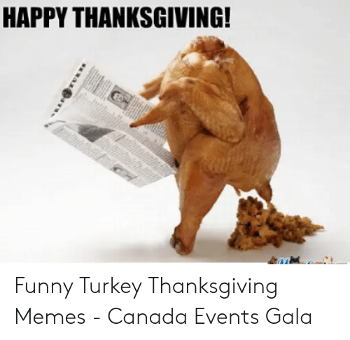 happy-thanksgiving-funny-turkey-thanksgiving-memes-canada-events-gala-52513376.png