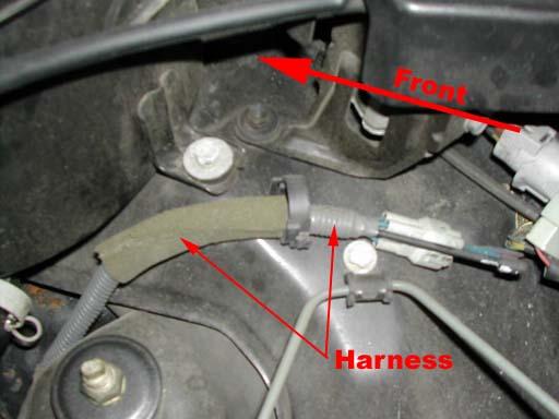 Harness02.jpg