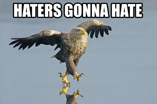 haters_RE_Haters_Gonna_Hate-s526x350-62877-580.jpg