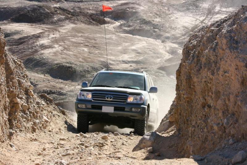 LC in desert2_comp.jpg