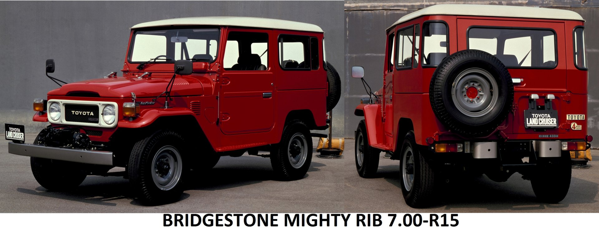 MIGHTY RIB R15.jpg