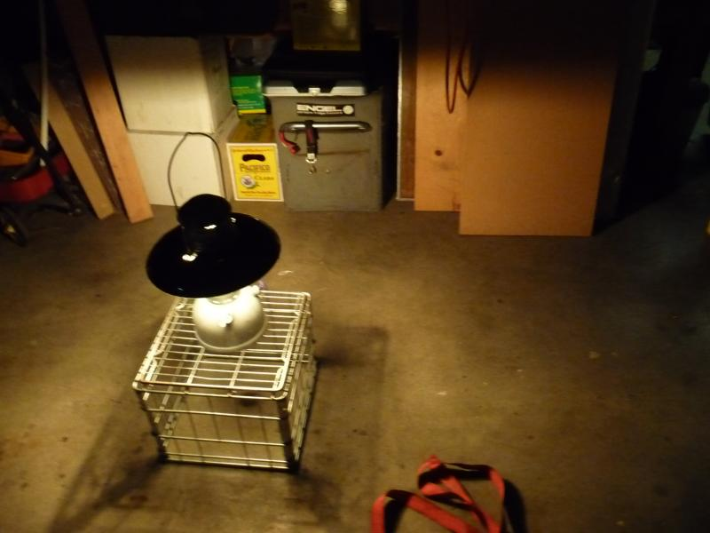 Petromax lantern, Swiss surplus  I need advice | IH8MUD Forum