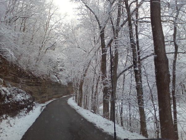 Snow drive.jpg