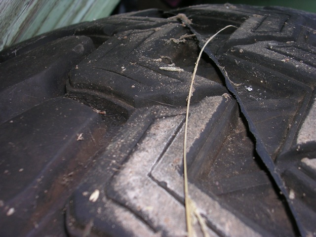tire and rim 33x12.5x16 150 4.JPG