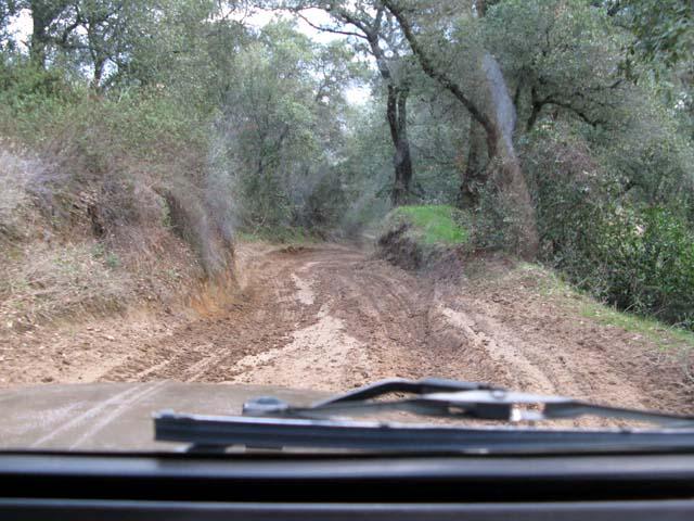 trail37.jpg