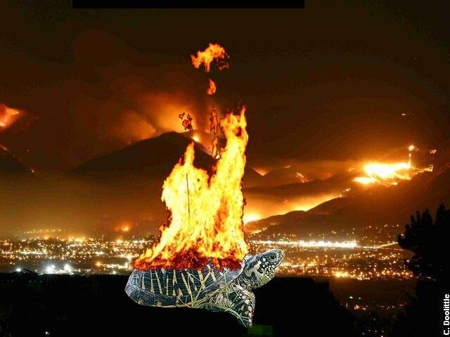 Turtle Fire.jpg