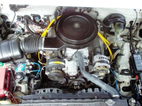 V8J80 004web.jpg