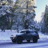 BigBearBoards